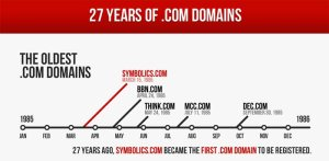 17-year-.com-domain-history-google-palace