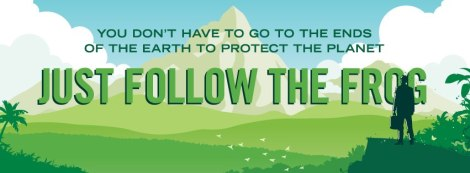 Follow-the-Frog-Week-20121