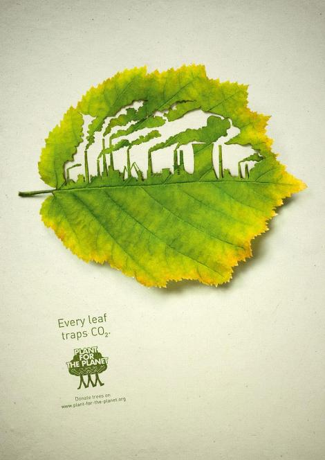 Every leaf traps CO2 – Plant for the planet