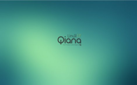 linux mint 17 qiana cinnamon